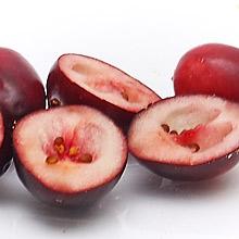 Halbierte Cranberries