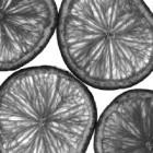 Limettenscheiben in schwarz-weiß