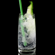 longdrink-gin-tonic_220
